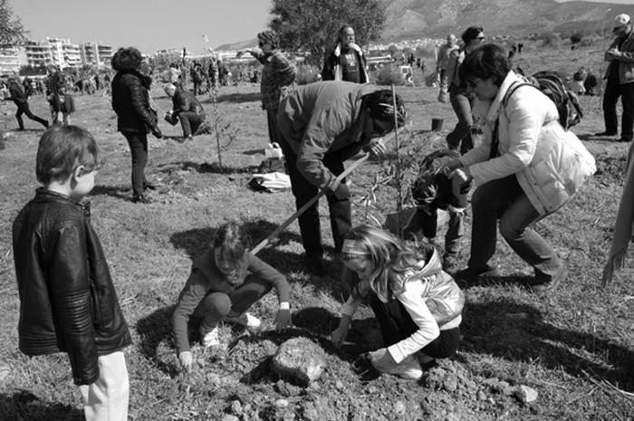 Εθελοντική δεντροφύτευση στο Ελληνικό 2012 πηγή: Δήμος Ελληνικού-Αργυρούπολης