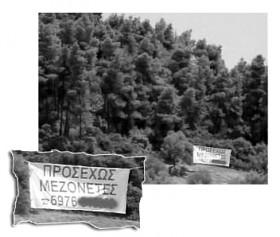pe11_Halkidiki 2007