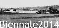Biennale 2014