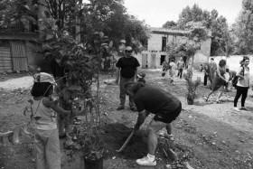 pe08_planting