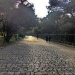 """""""ΤΟ ΑΝΕΠΑΙΣΘΗΤΟ ΤΡΑΥΜΑ"""" οι διαδρομές του Δημήτρη Πικιώνη και η μαρτυρία του Χρήστου Διδώνη"""